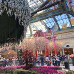 ベラージオの植物園