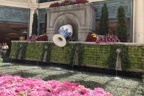 ベラージオ植物園夏2018