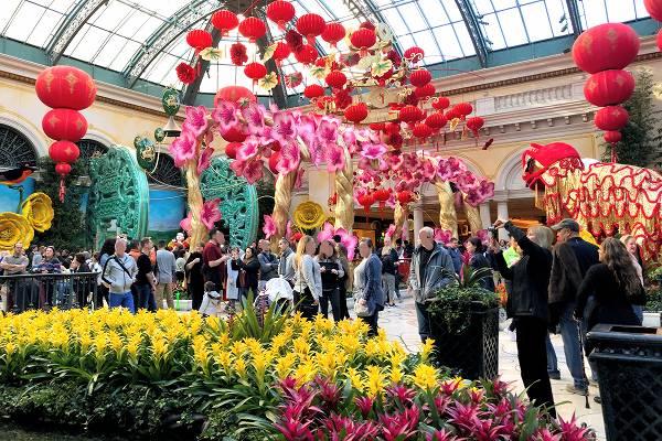 ベラージオ植物園 春節