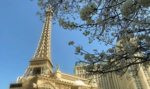 パリスホテルの春