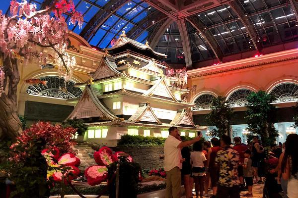 ベラージオ植物園 大阪城