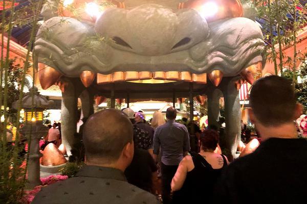 ベラージオ植物園 難波八阪神社