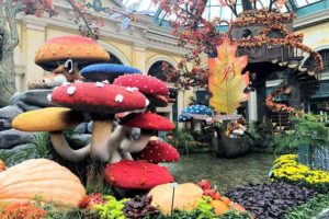 ベラージオ植物園